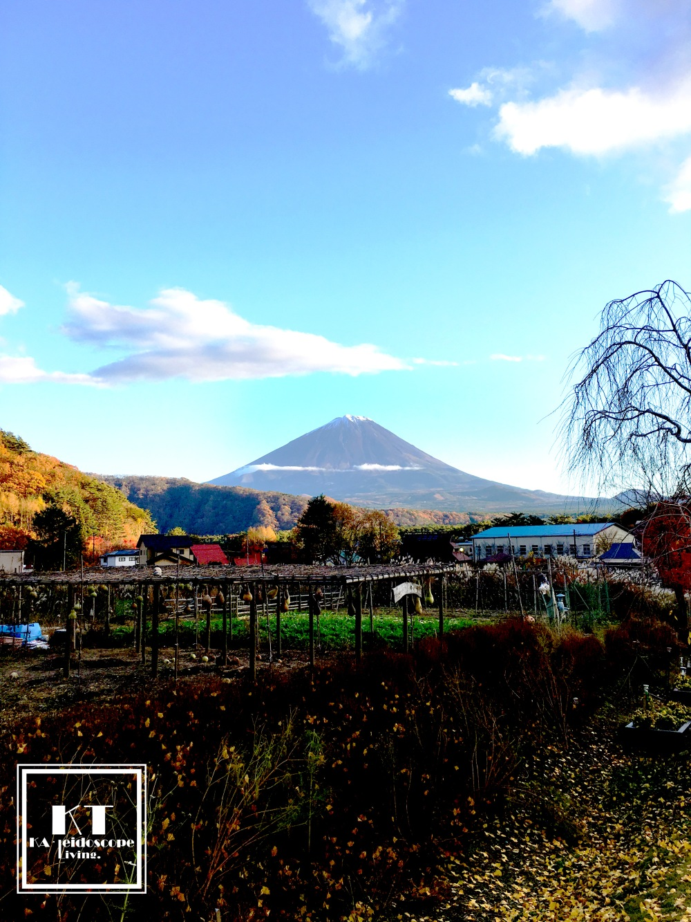 Travel Must Visit Mount Fuji Iyashi no Sato Nenba Japan 01