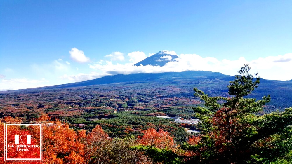 Travel Must Visit Mount Fuji Maple Leaves Lookout Japan 05