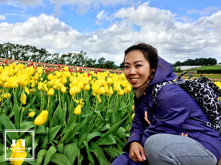 Bucket List Must Do Melbourne Tesselaar Tulip Festival 19