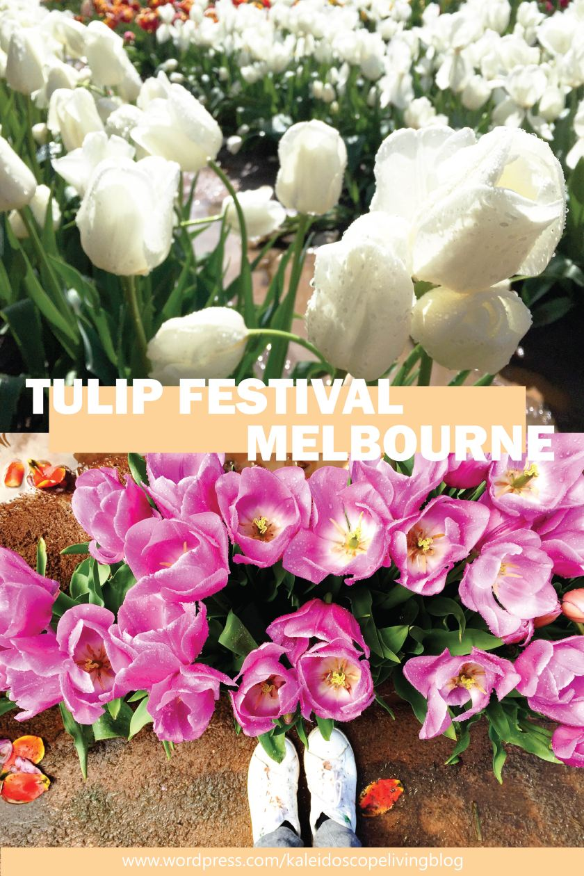 Bucket List Must Do Melbourne Tesselaar Tulip Festival 20