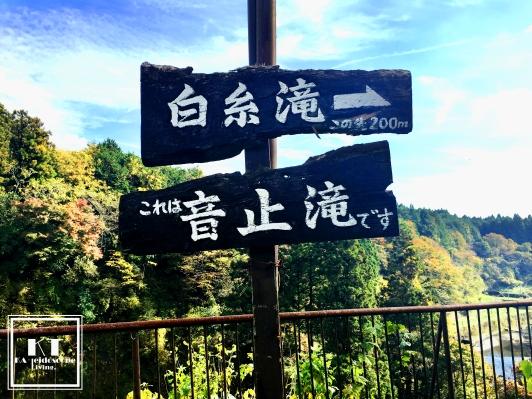 Travel Japan Shizuoka Fujinomiya Mount Fuji Shiraito Falls 日本 静岡 富士宮 白井との滝