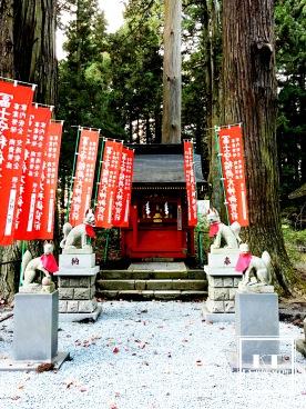 Travel Japan Yamanashi Fuji Sengen Jinja Redleaves 日本 山梨 富士浅間神社 紅葉