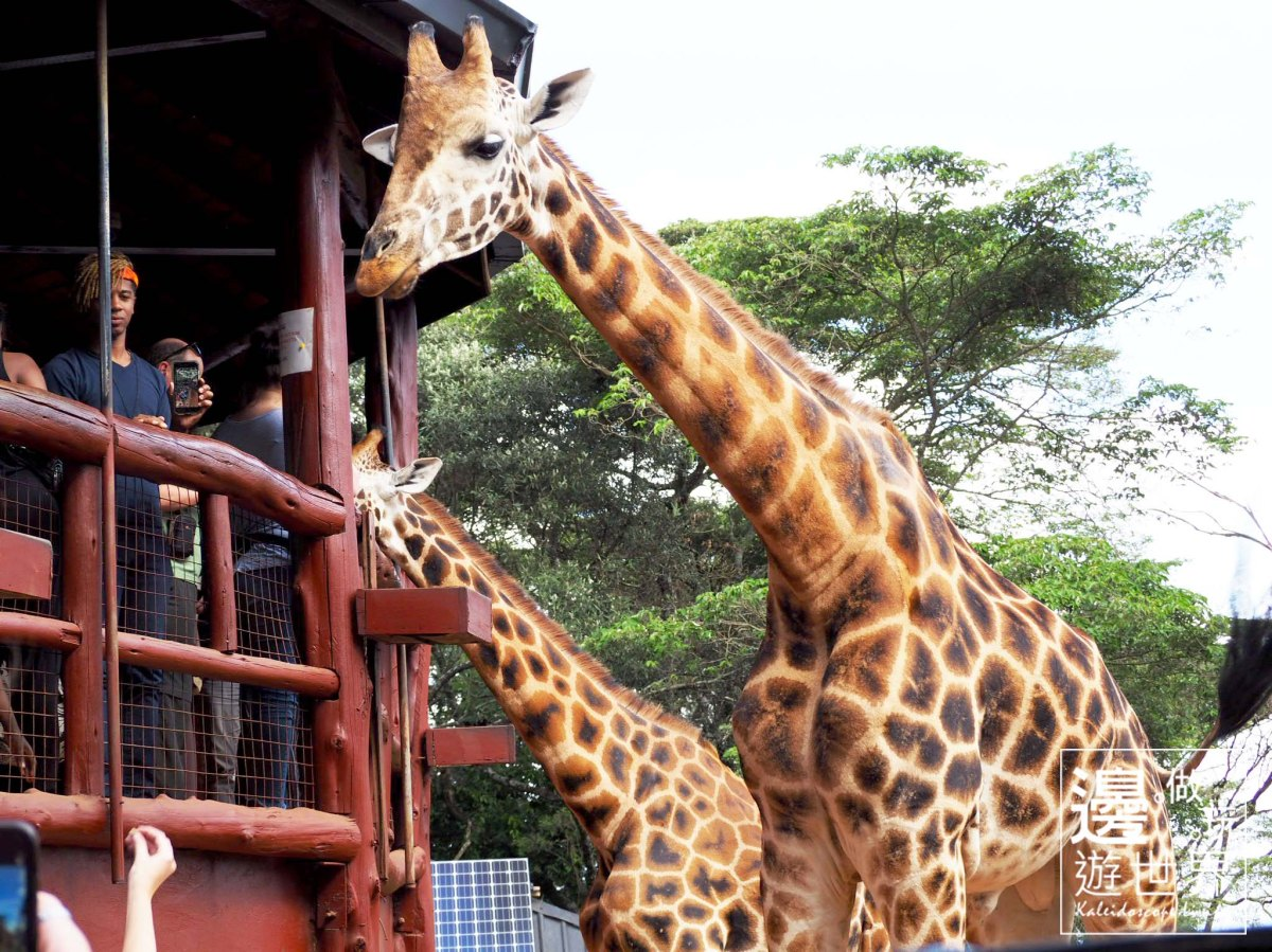 My First Time to Kenya – Where to Visit Before the Safari Tour Begins?!