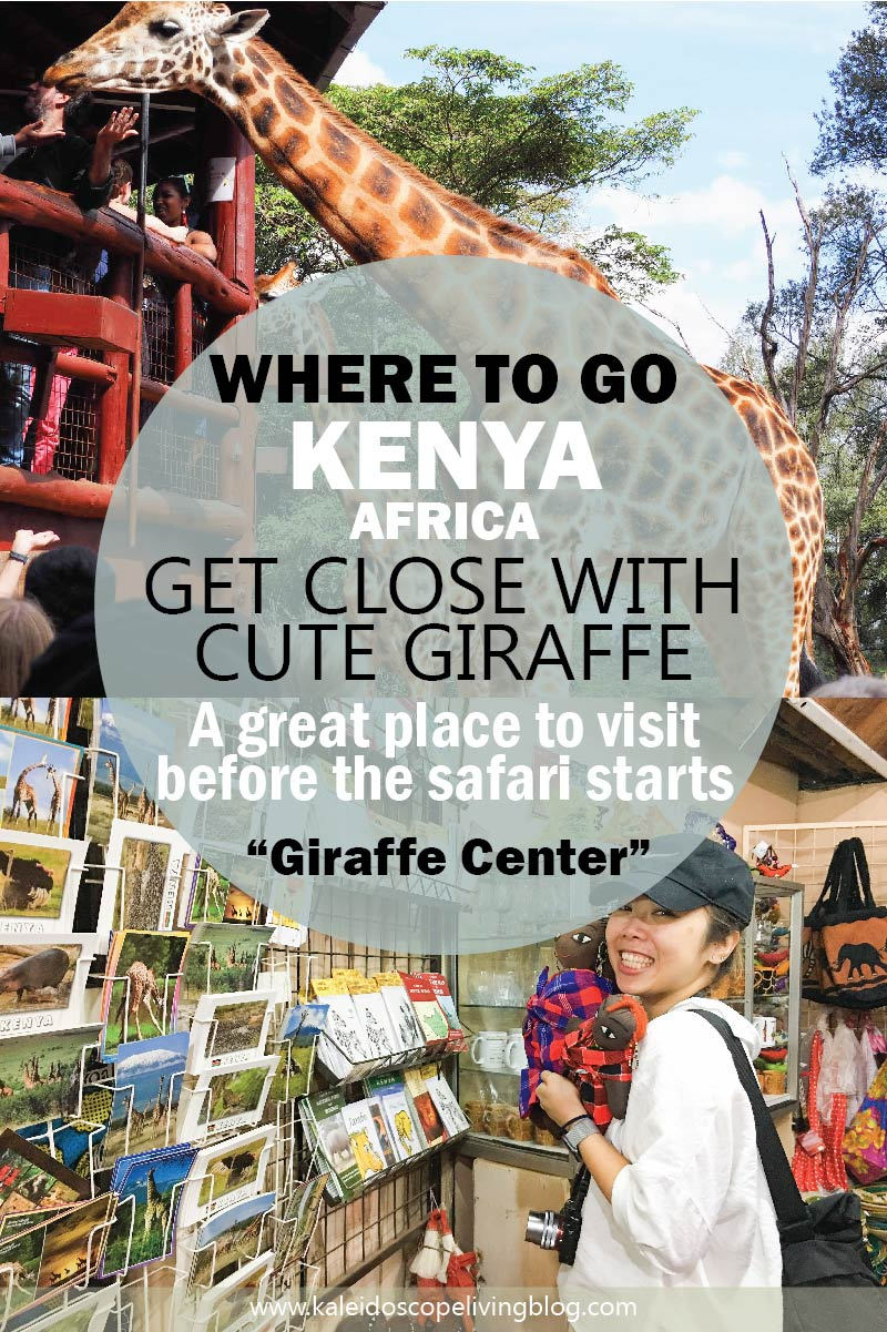 Must Do Travel Africa Kenya Nairobi Giraffe Center 肯亞