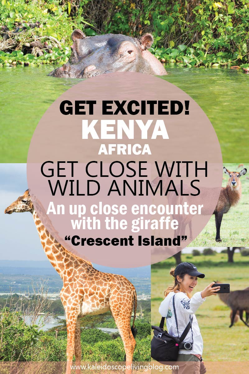 At Crescent Island You Can Walk Up Close to the Giraffes in the Wild