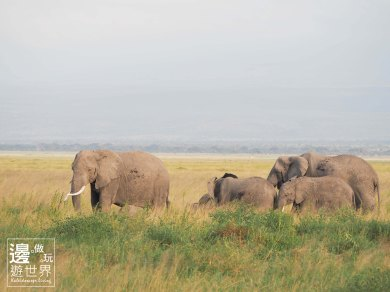 Must Travel Kenya Safari Holiday in Amboseli National Park with Mount Kilimanjaro Masai Elephant Twins