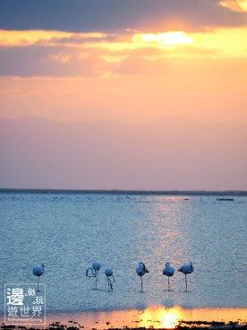 Must Travel Kenya Safari Holiday in Amboseli National Park with Mount Kilimanjaro Masai Sunset Flamingos