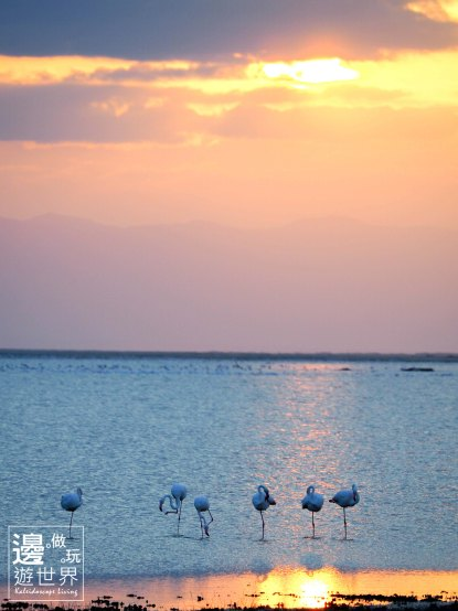 Must Travel Kenya Safari Holiday in Amboseli National Park with Mount Kilimanjaro Masai Sunset Flamingos
